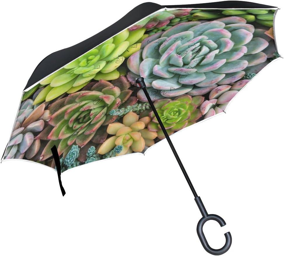 icyflower Inverse Umbrella Upside Down Umbrella Succulents Pattern Green Straight auto Open Travel Present
