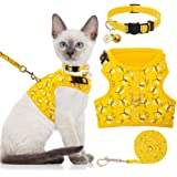 BINGPET Cat Harness with Leash and Collar for Walking - Escape Proof with 59 Inches Leash - Adjustable Soft Vest…