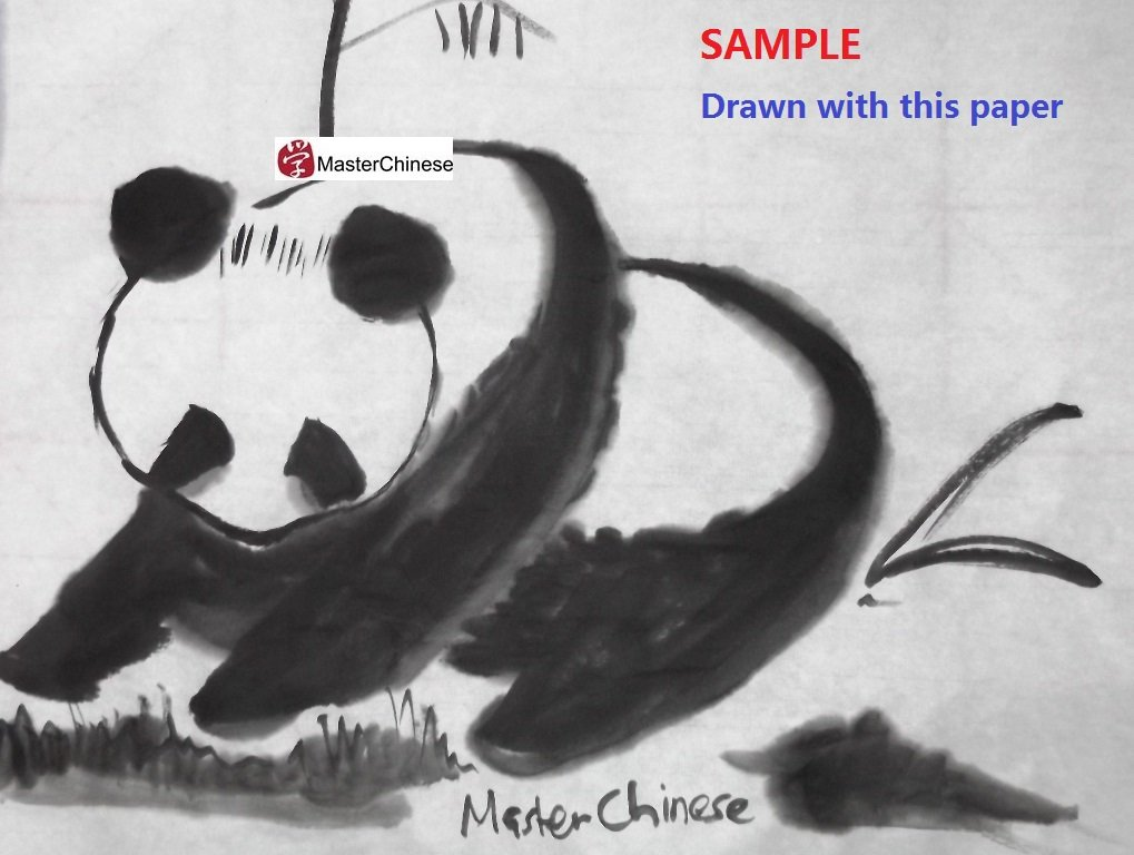MasterChinese 27''x67ft - Xuan Chinese Calligraphy Sumi Drawing Kanji Watercolor Rice Paper Roll - 69cmx20m - White by MasterChinese