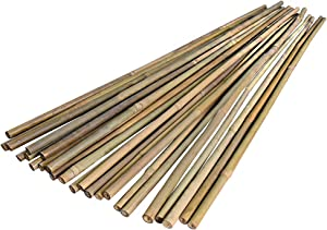 Natural Bamboo Stakes,Bamboo Sticks for Plants,Garden Trellis Supports Climbing for Tomatoes, Trees, Beans (24inch)