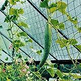 Beckmann RAN - Enrejado para jardín