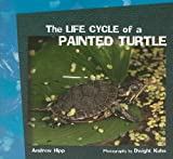 The Life Cycle of a Painted Turtle, Andrew Hipp, 140425207X