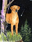 Cheap Caroline's Treasures SS8479GF Starry Night Rhodesian Ridgeback Flag, Small, Multicolor