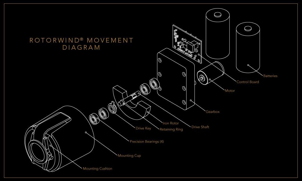 Siena Two Executive Teakwood Watchwinder by Orbita Model W13025 by Orbita (Image #2)