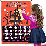 OurWarm Christmas Advent Calendar 2019 for Kids, 24 Days Felt Christmas Tree Countdown Calendar Flip Pattern and Number for Home Holiday Christmas Decorations