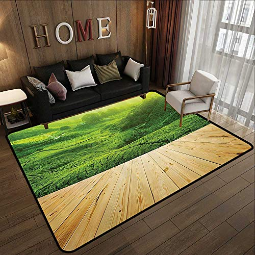 - Printed Carpet,Farm House Decor Collection,Highlands Tea Plantations from Wood Balcony Perspective Sunrise in Eary Morning with Fog,Gre 47