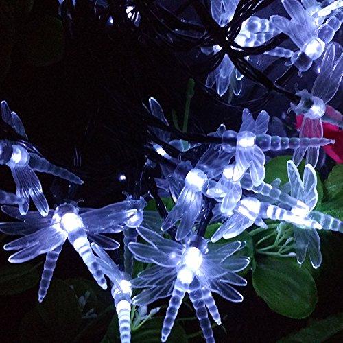 100M Solar Fairy Lights - 9