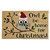 DII Indoor/Outdoor Natural Coir Easy Clean Rubber Back Entry Way Doormat For Patio, Front Door, All Weather Exterior Doors, 18 x 30'' - Owl Be Home Christmas