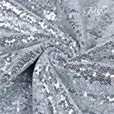 TRLYC New Year Sequin Silver curtainss, Select You
