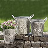 Whole House Worlds The French Country Style Fleur de Lis Jardinière, Set of 3, Rustic Cache Pots, Bucket Planters, Galvanized Metal, Lush Gray Patina, Topiary, Plants, and Floral Arrangements, By