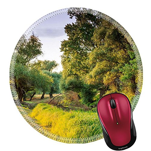 Liili Mouse Pad Natural Rubber Round Mousepad Wooded riverside landscape in Hungary Image ID - Park Riverside North