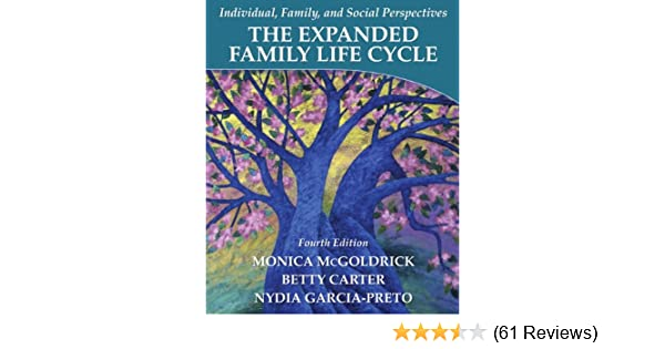 The expanding family life cycle: individual, family, and social.