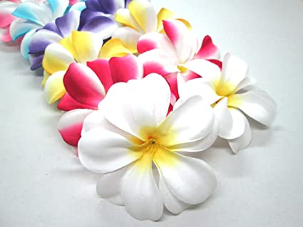 Amazon 12 assorted hawaiian plumeria frangipani silk flower 12 assorted hawaiian plumeria frangipani silk flower heads 3quot artificial flowers mightylinksfo