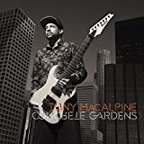 Tony MacAlpine | Concrete Gardens | CD