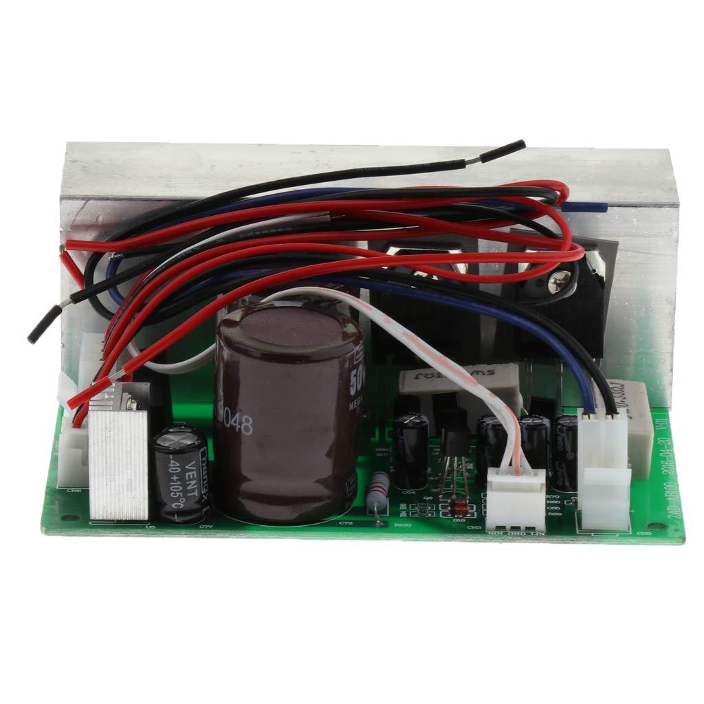 P Prettyia Placa Amplificadora de Audio Mono de Potencia DC 12-24V 100W, Set con Disipador