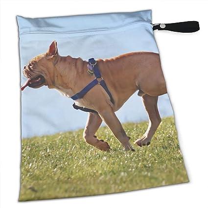 Amazoncom Wolong Yellow Pet Bulldog Sundries Bag Diaper Bag Home