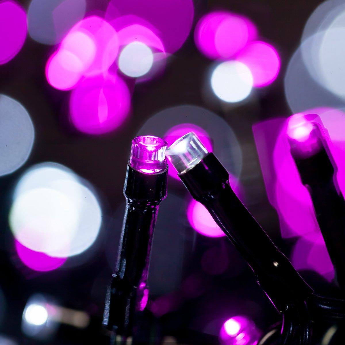 Blu+ Bianco Catena Luminosa WISD Cavo Verde Scuro Stringa Luci Con 8 Modalit/à Luci Natalizie Bicolori 33M 600 LED Luci Per Casa//Natale//Giardino//Feste Funzione Di Memoria Bassa Tensione