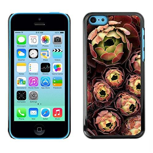 Premio Sottile Slim Cassa Custodia Case Cover Shell // F00008756 fleurs // Apple iPhone 5C