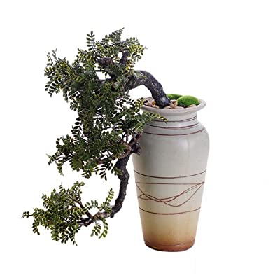 Xuejuanshop Artificial Bonsai Tree/Welcome Bonsai Realistic Faux Cedar Bonsai Tree, Houseplant, White Ceramic Flower Pot, Pebbles, Padded Bottom, Over 1 Ft Tall, (H39cm) Faux Potted Plant: Home & Kitchen