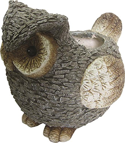 Cheap  Alpine Owl Planter, 13