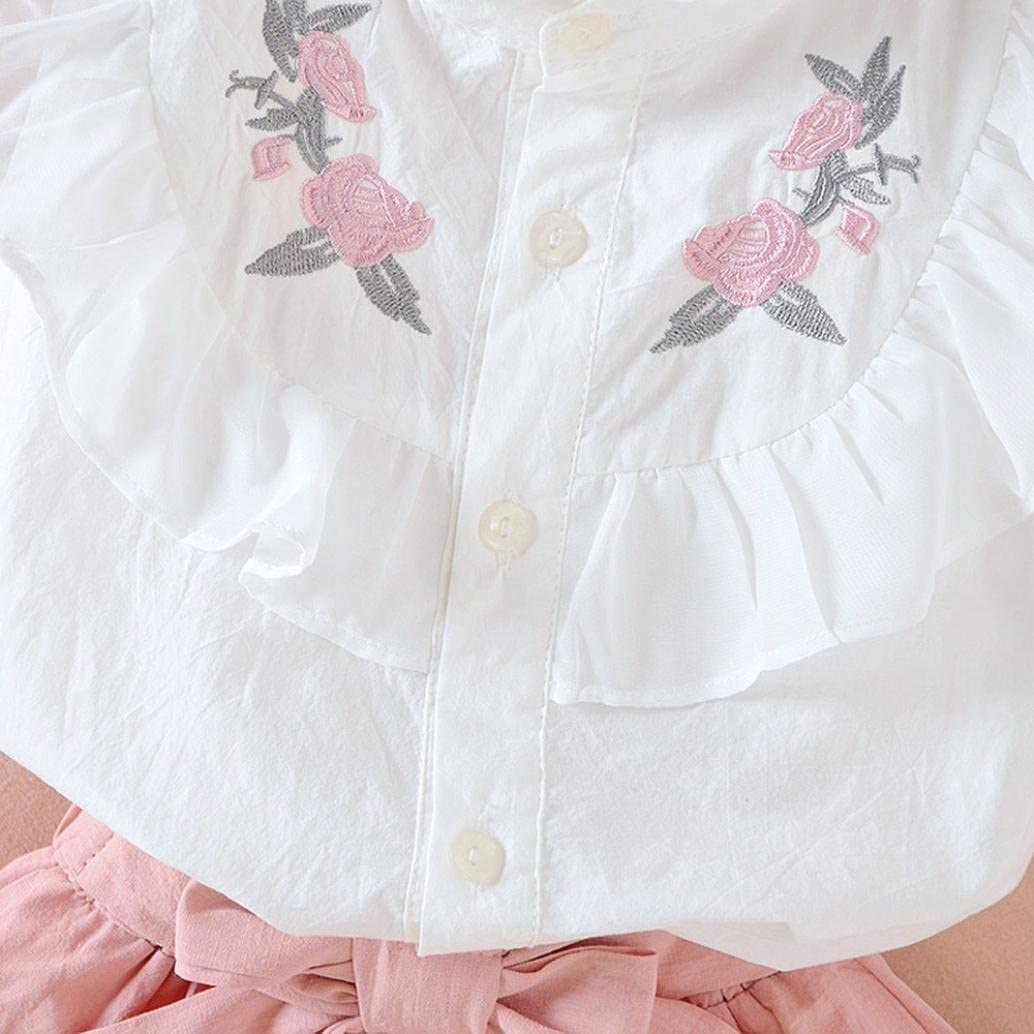 Fashion Hot Sales Baby Kids Girls Ruffle Embroidered Floral Tops+Shorts Summer Outfits Sets TM Jchen