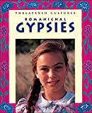img - for Romanichal Gypsies (Threatened Cultures) book / textbook / text book