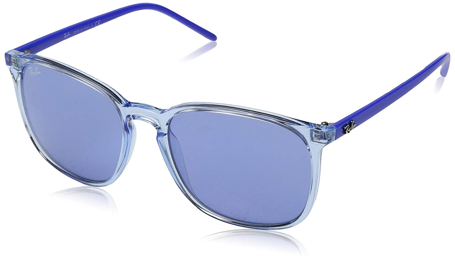 eeed0bd1a33 Amazon.com  Ray-Ban Men s 0rb4387 Round Sunglasses
