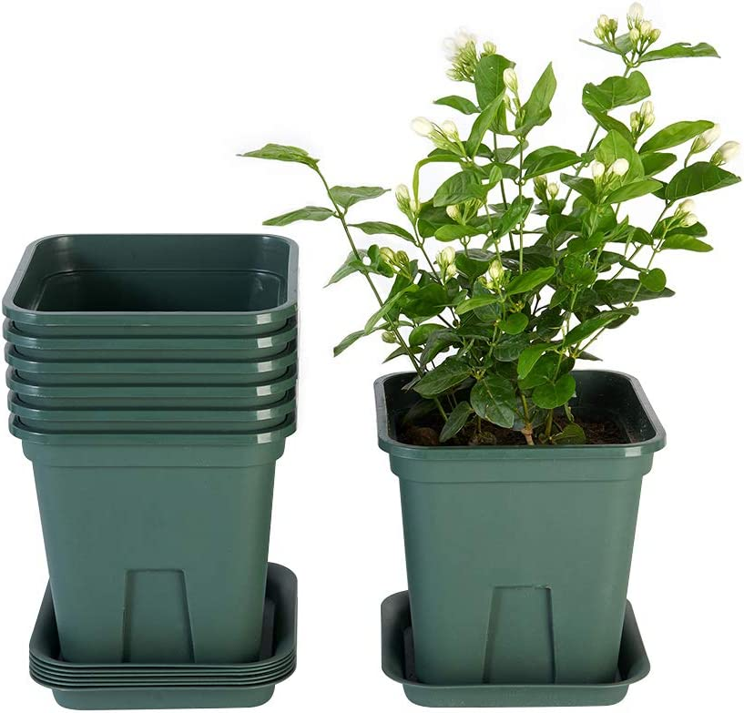 Flower Plant Pots, 6 Inch Plastic Pots for Plants with Drainage Hole and Tray Indoor Outdoor Garden Planters Pack of 7