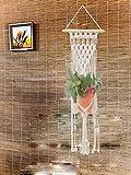 Pooja ki Potli Macrame Plant Hanger Bright Sun-Handmade-Cotton Cord-Boho Interior Decor Home Decor Garden Decor 32''X12''
