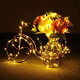 20FT Starry String Lights Warm White Color LED's on a Flexible Copper Wire - LED String Light with 120 Individually Mounted LED's-UL Adaptor Included