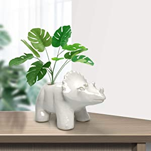 Animal Ceramic Succulent Planters,Cute planters, Cute Dinosaur Pot, Ceramic Garden Animals for Home Decor Flower Vase Window Box