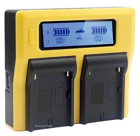PATONA Cargador compatible con batería Fujifilm NP-T125 ...