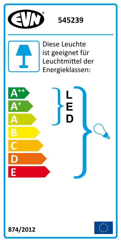 EVN Lichttechnik ALU-Spot mit Erdspiess 545239 IP54 230V GU10 Downlight//Strahler//Flutlicht 4037293012249