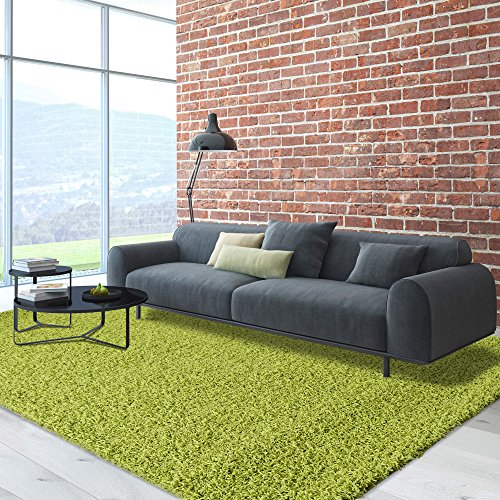 iCustomRug Cozy Soft And Plush Pile, 5ft0in x 7ft0in ( 5X7 ) Shag Area Rug In Apple / Lime Green