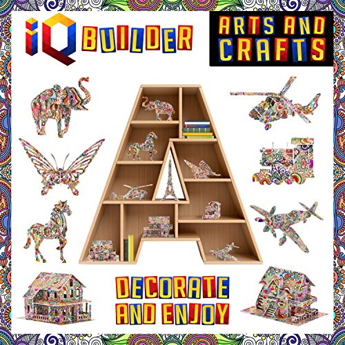 Amazon Com Iq Builder Fun Creative Diy Arts And Crafts Kit Best