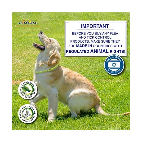 Arava Flea & Tick Prevention Collar - for Dogs & Puppies - Length-25'' - 11 Natural Active Ingredients - Safe for Babies & Pets - Safely Repels Pests - Enhanced Control & Defense - 6 Months Protection 5