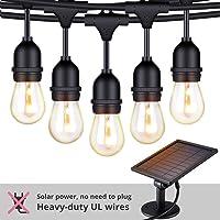 Foxlux 48-ft. Landscape Solar String LED Lights (S14 Edison)