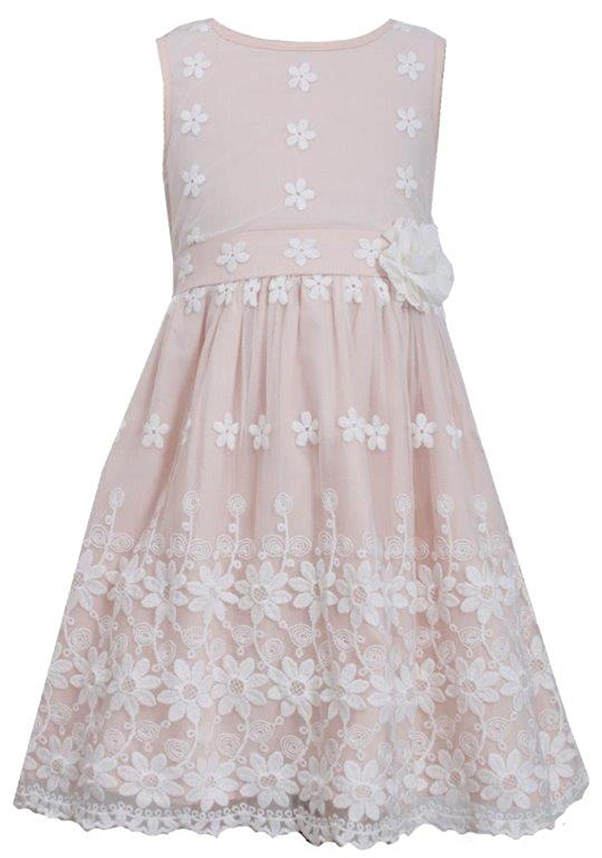 Amazon.com  Bonnie Jean Big Girls Lace Border Schiffli Easter Spring Dress   Clothing 93b005e9c