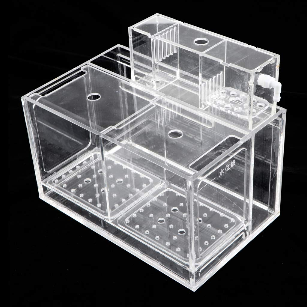 Kesoto Aquarium Hatchery Fish Breeding Box Tank Breeder Multi Grid Isolation Box - 2 Grid by Kesoto (Image #5)