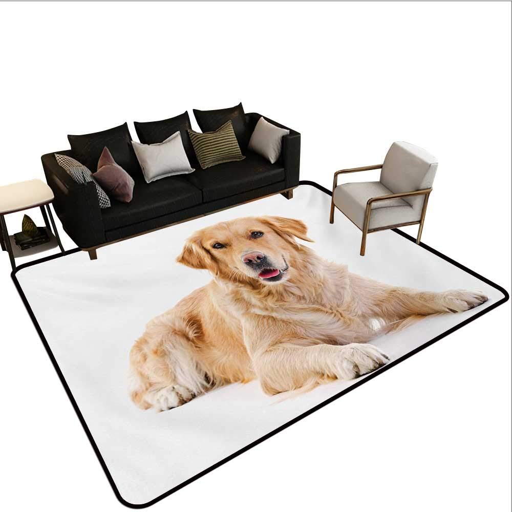 Non-Slip Floor mat,Young Pedigree Puppy Laying Over White Background Sweet Baby Dog 6'x7',Can be Used for Floor Decoration