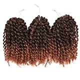Silike (3 Bundles/pack) 8'' Ombre Marlybob Kinky Curl (T1B/30) Afro Kinky Braid Hair Extension