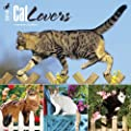 Cat Lovers 2016 Square 12x12 Wall Calendar