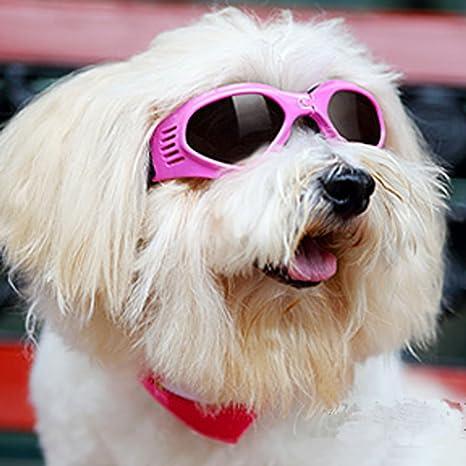 Gafas de sol Dengzhu para perro, gafas protectoras para ...