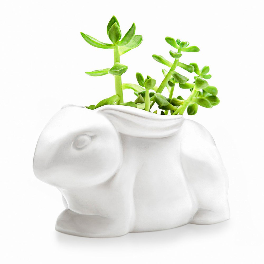Mkono Small Succulent Planter White Ceramic Cactus Plant Pot Vivid Rabbit Shape