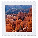 3dRose Danita Delimont - Utah - Utah, Bryce Canyon National Park, Bryce Canyon - 18x18 inch quilt square (qs_260210_7)