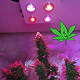LED Grow Light Full Spectrum for Marijuana Medical 12 Band with UV IR COB B400 400w Dimmable LED Grow Light for Indoor Plants Veg Flower Bloom(5 Years Warranty)