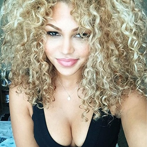 AISI HAIR Long Curly Super Soft Synthetic Wigs Attractive Blonde Color wigs for Black Women Afro (Blonde Curly Wig)