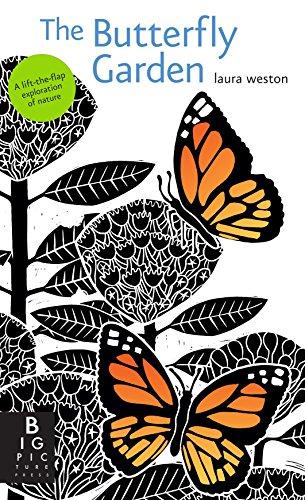 Cheap  The Butterfly Garden