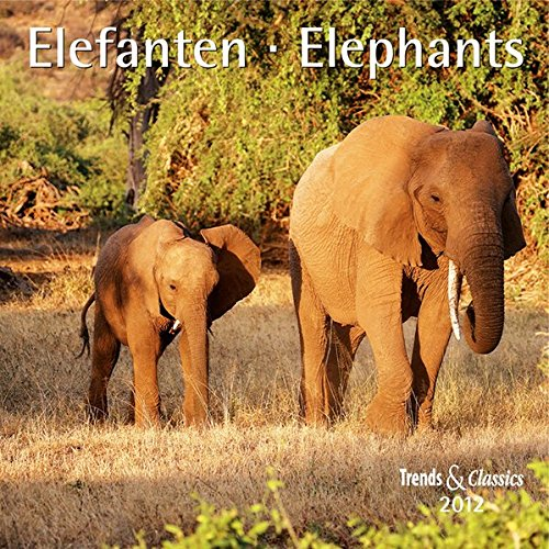 Elefanten - T & C-Kalender 2012