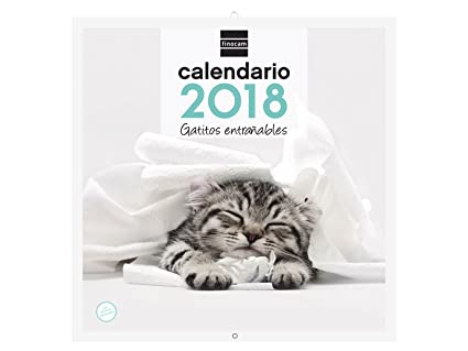 Finocam Imágenes - Calendario de pared 2018, diseño gatitos, español, 300 x 300